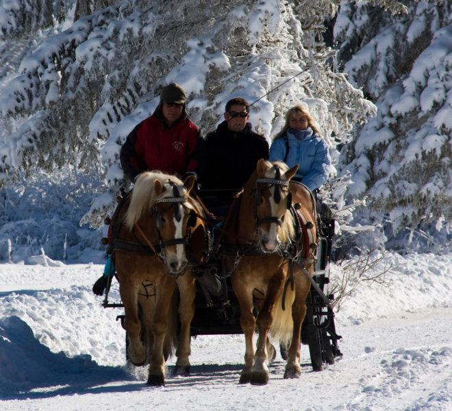 pferdeschlittenfahren-winter